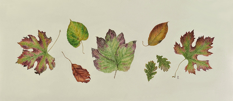 """""""Autumn Leaves"""""""